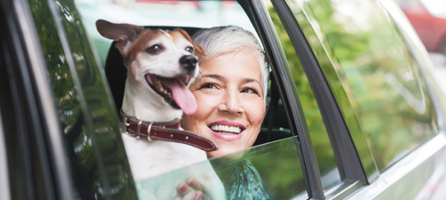 Woman with a dog in a car