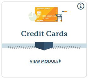 Credit Cards Everfi Module Icon